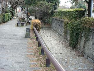小川冬2.jpg
